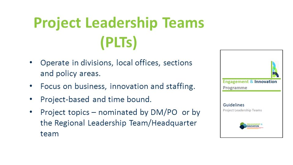 Project Leadership Teams (PLTs)