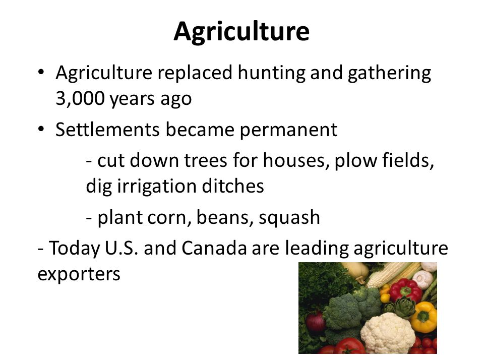 a comparison of hunting and gathering and agriculture The neolithic transition with the development of agriculture, humans hunting-and-gathering bands managed to subsist in the zones.