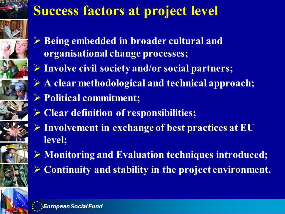 Success factors at project level