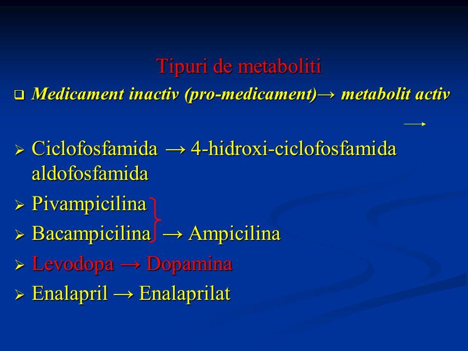 Ciclofosfamida → 4-hidroxi-ciclofosfamida aldofosfamida Pivampicilina