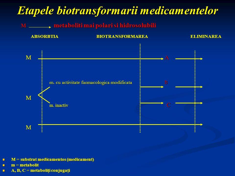 Etapele biotransformarii medicamentelor