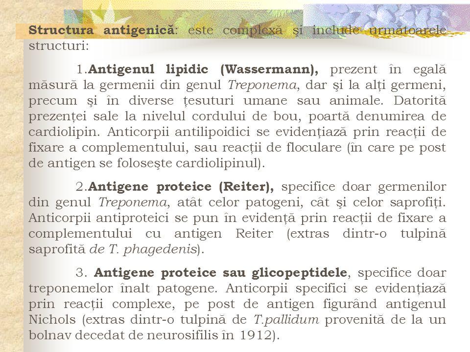 Structura antigenică: este complexă şi include următoarele structuri: