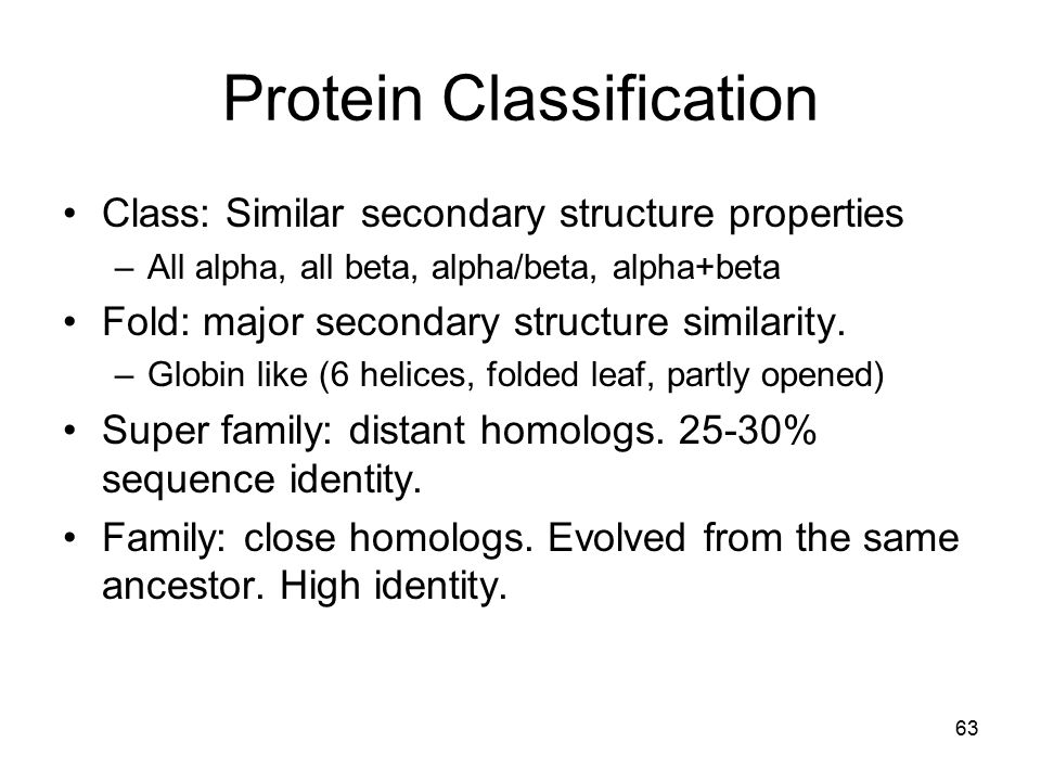 protein structure and classification pdf