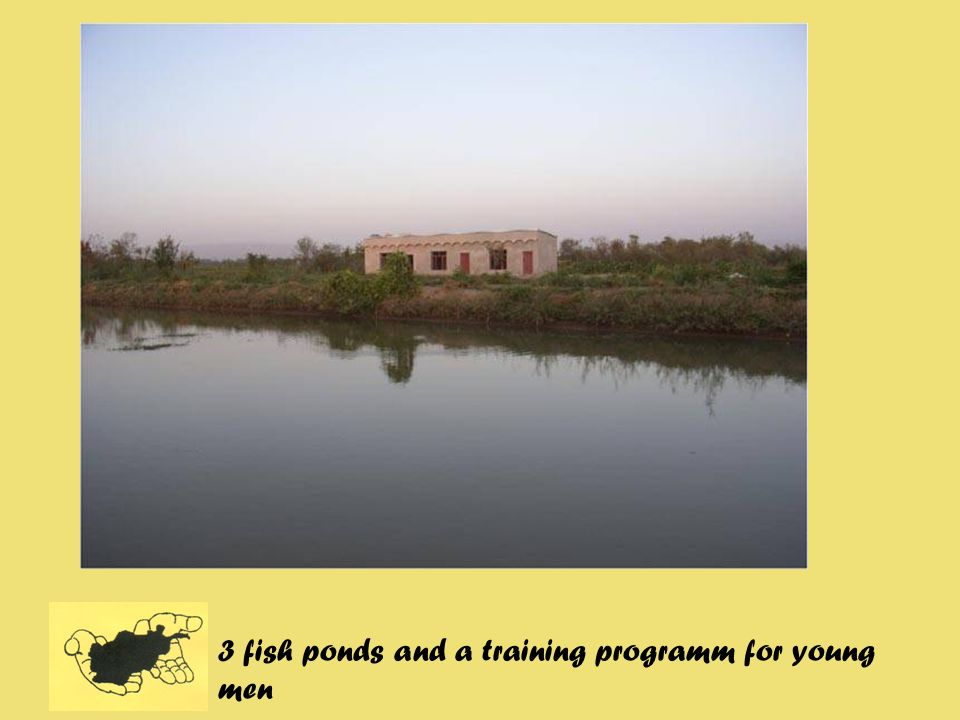 3 fish ponds and a training programm for young men