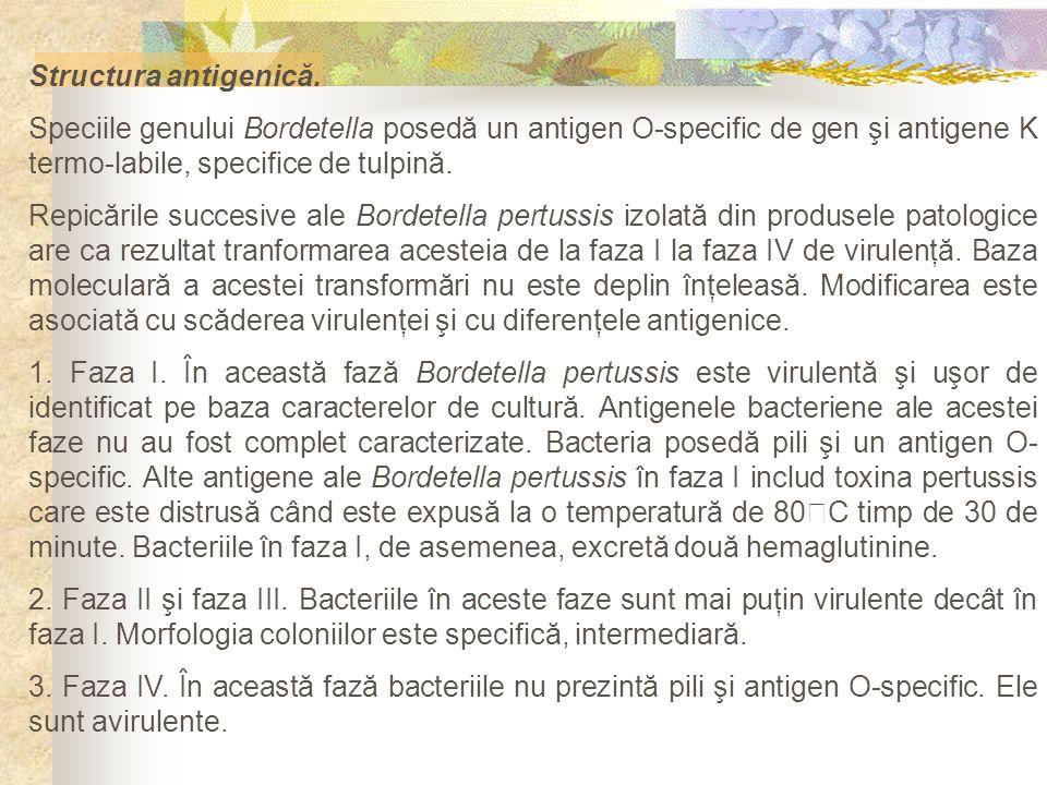 Structura antigenică. Speciile genului Bordetella posedă un antigen O-specific de gen şi antigene K termo-labile, specifice de tulpină.