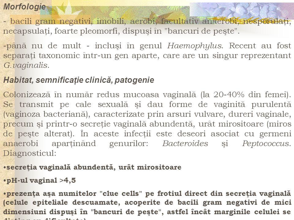 Habitat, semnificaţie clinică, patogenie