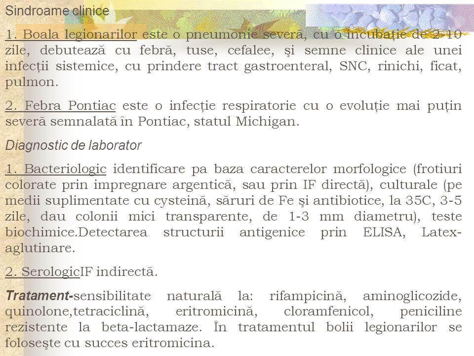 Sindroame clinice
