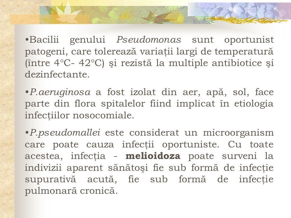 Bacilii genului Pseudomonas sunt oportunist patogeni, care tolerează variaţii largi de temperatură (între 4C- 42C) şi rezistă la multiple antibiotice şi dezinfectante.