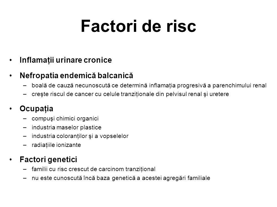Factori de risc Inflamaţii urinare cronice