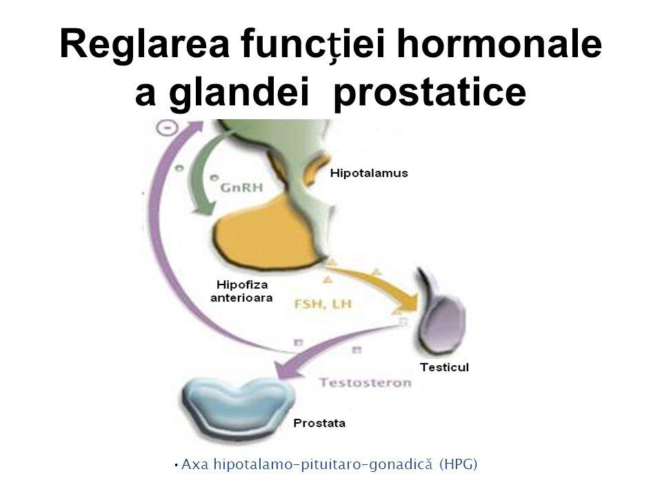 Reglarea funcției hormonale a glandei prostatice