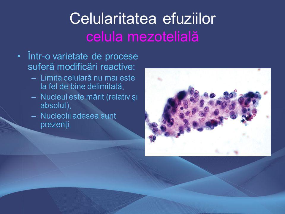 Celularitatea efuziilor celula mezotelială
