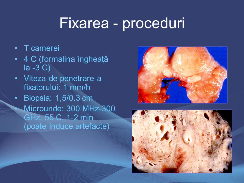 Fixarea - proceduri T camerei 4 C (formalina îngheaţă la -3 C)