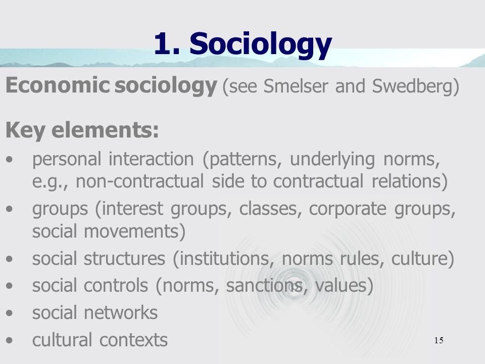 1. Sociology Economic sociology (see Smelser and Swedberg)