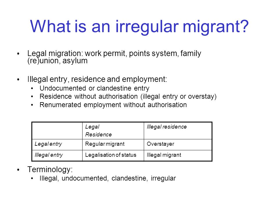 What is an irregular migrant