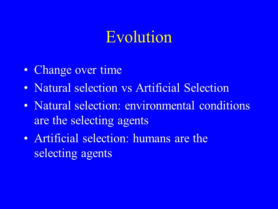 Explain How A Species Can Evolve Through Natural Selection