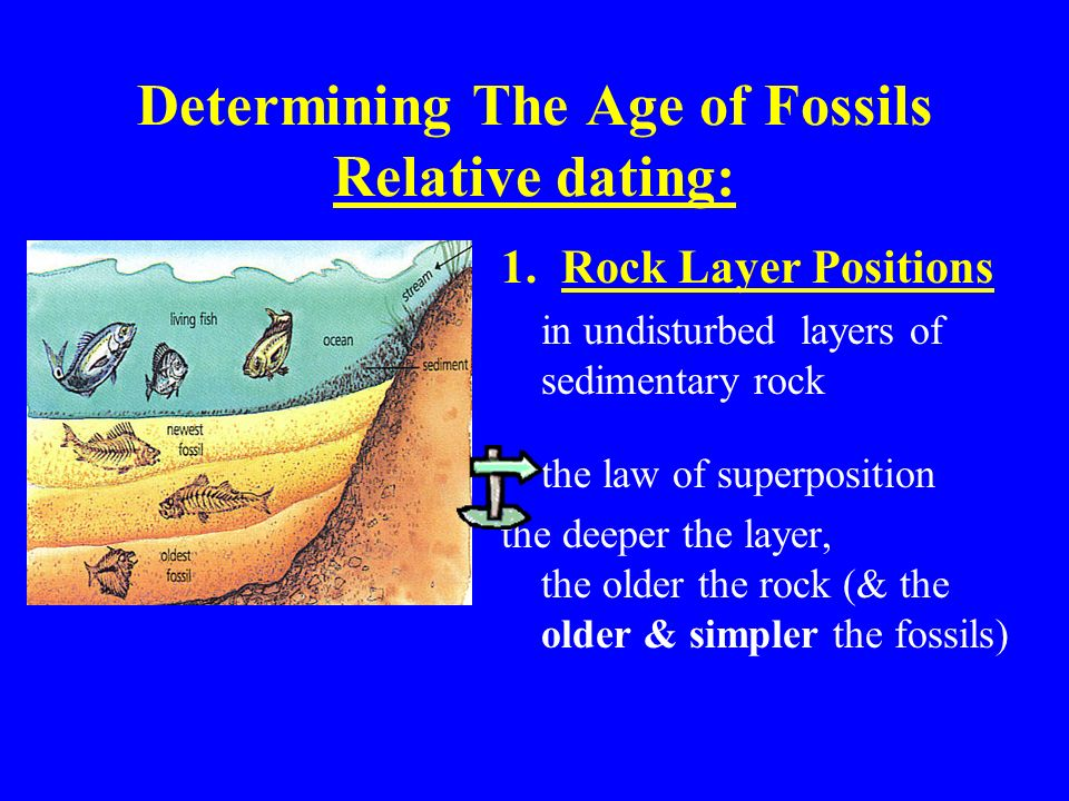 Sedimentary and metamorphic rocks and age determination