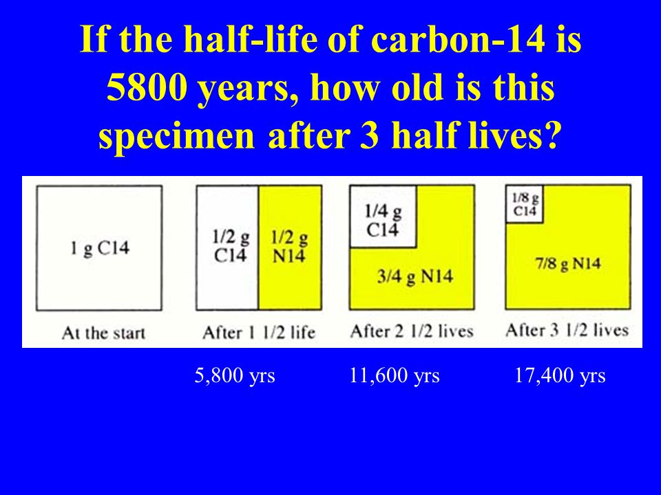 radioisotope of carbon used in carbon dating How does carbon dating work carbon-14 is a weakly radioactive isotope of carbon also known as radiocarbon, it is an isotopic chronometer.