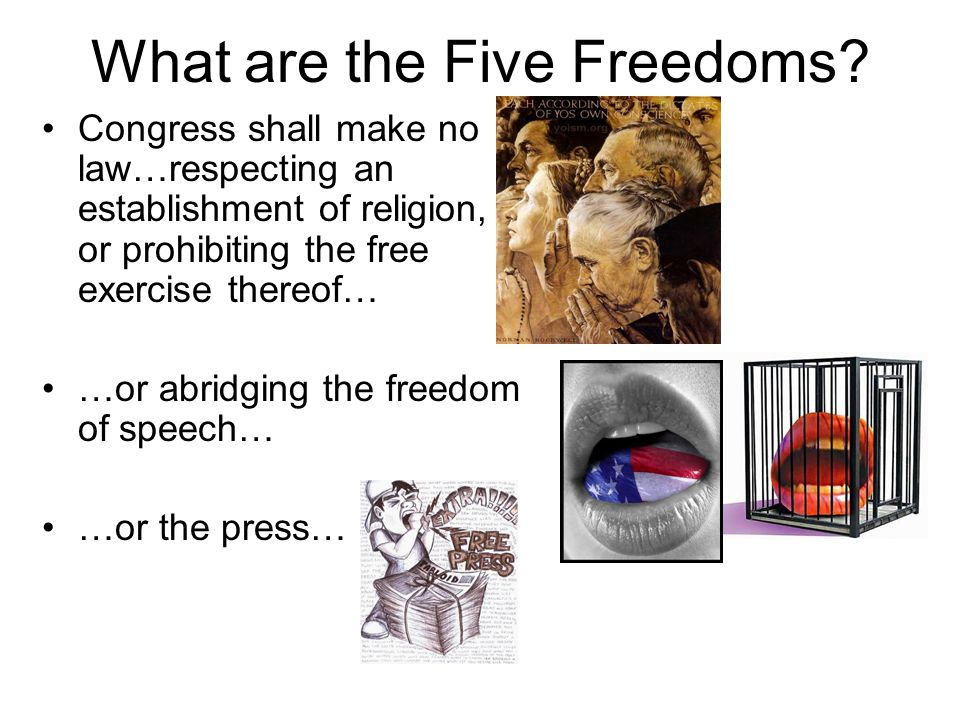 The First Amendment's 5 Freedoms - ppt download