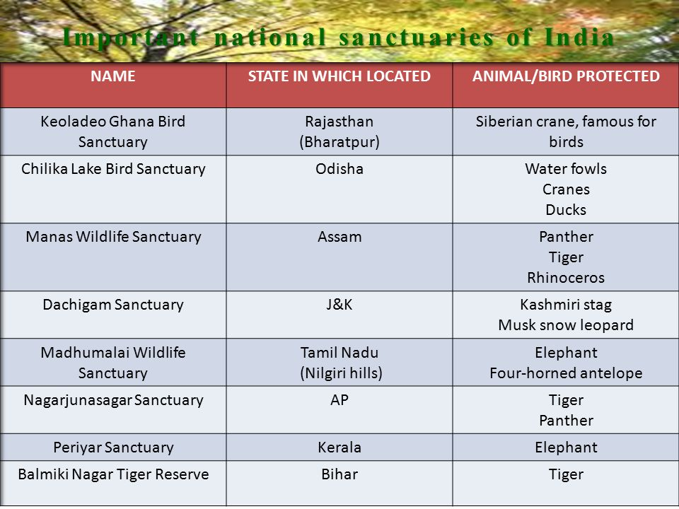 Important national sanctuaries of India ANIMAL/BIRD PROTECTED