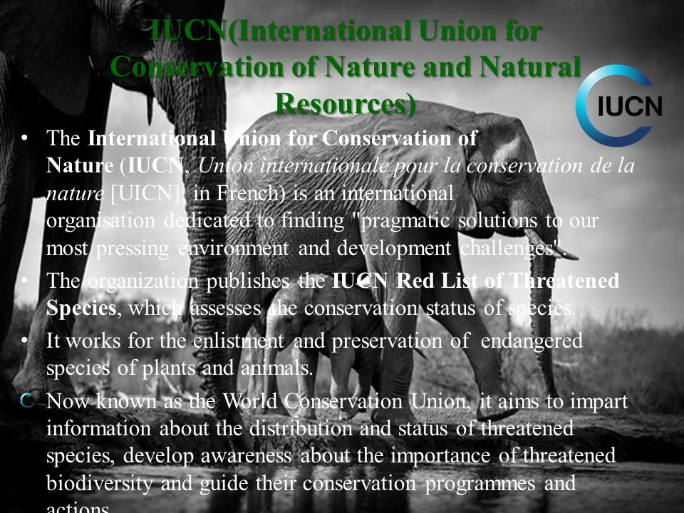 IUCN(International Union for Conservation of Nature and Natural Resources)