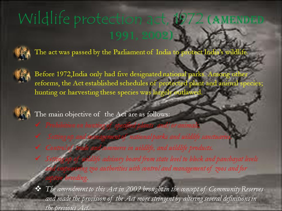 Wildlife protection act, 1972 (Amended 1991, 2002)
