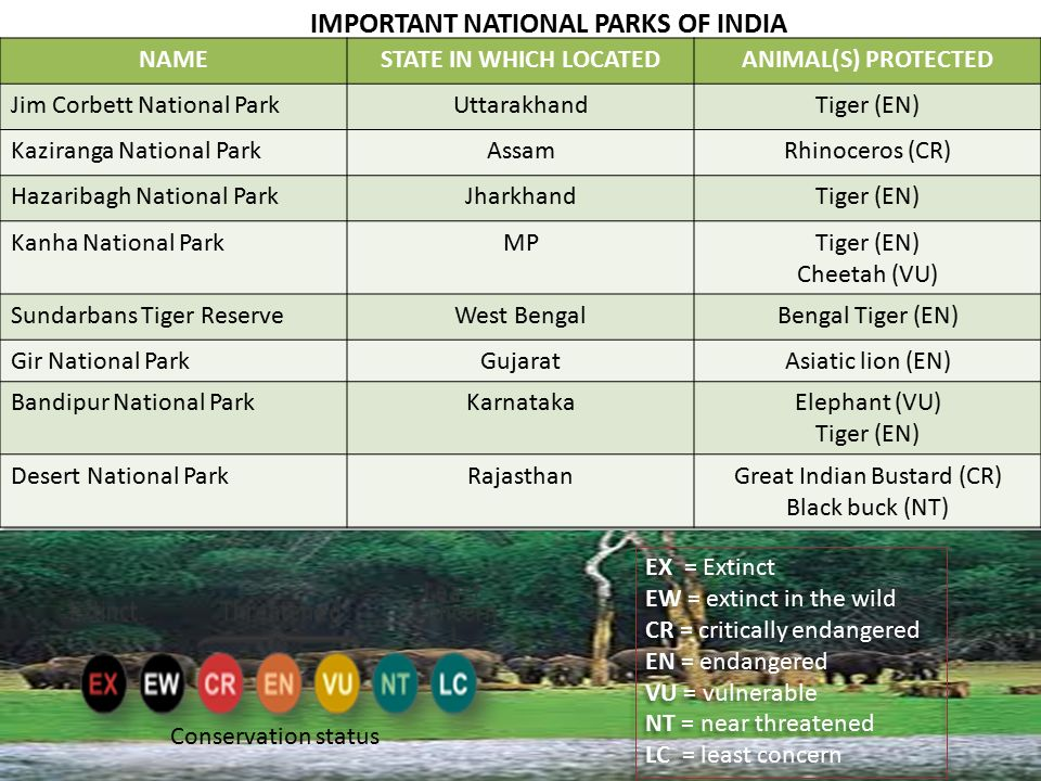 IMPORTANT NATIONAL PARKS OF INDIA