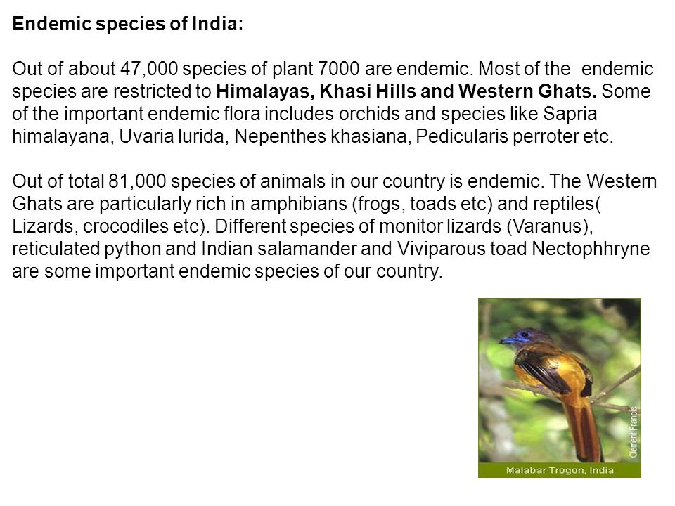 Endemic species of India: