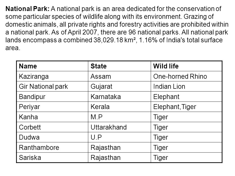 National Park: A national park is an area dedicated for the conservation of some particular species of wildlife along with its environment. Grazing of domestic animals, all private rights and forestry activities are prohibited within a national park. As of April 2007, there are 96 national parks. All national park lands encompass a combined 38,029.18 km², 1.16% of India s total surface area.