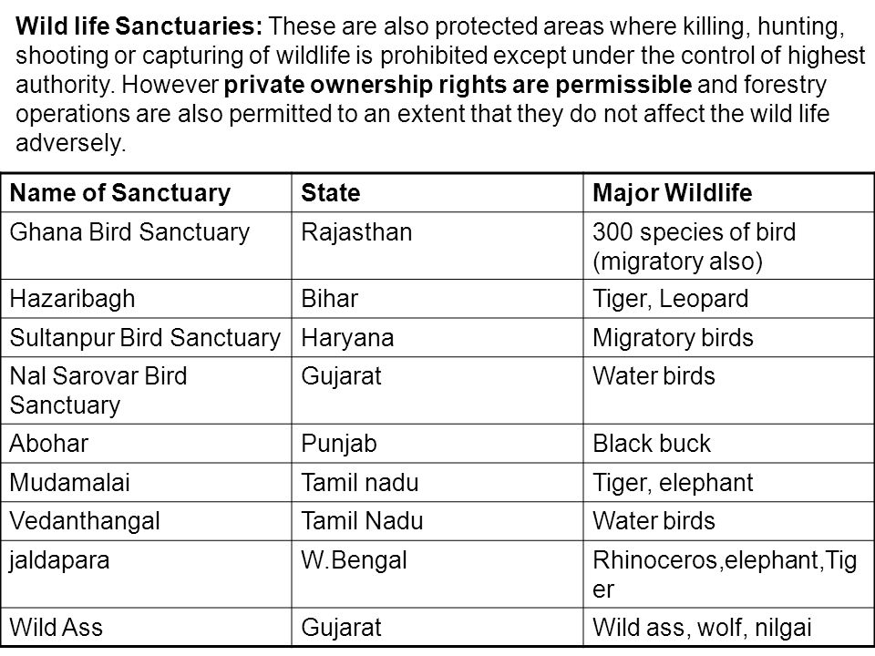 Wild life Sanctuaries: These are also protected areas where killing, hunting, shooting or capturing of wildlife is prohibited except under the control of highest authority. However private ownership rights are permissible and forestry operations are also permitted to an extent that they do not affect the wild life adversely.