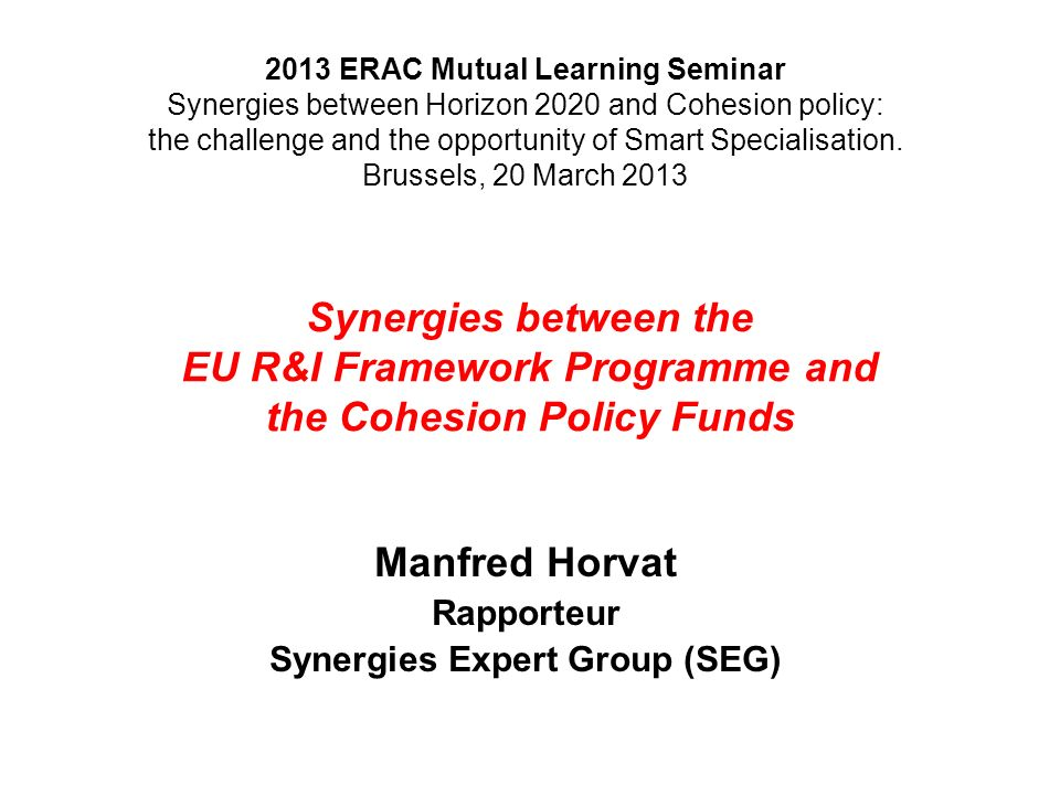 Manfred Horvat Rapporteur Synergies Expert Group (SEG)