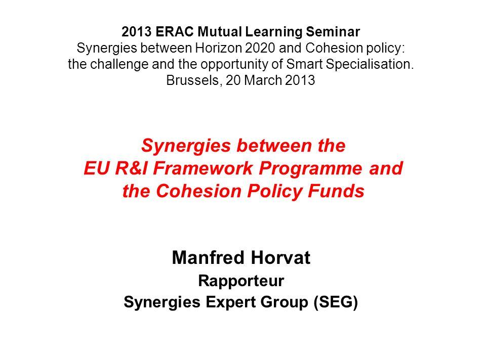 Manfred Horvat Rapporteur Synergies Expert Group (SEG)
