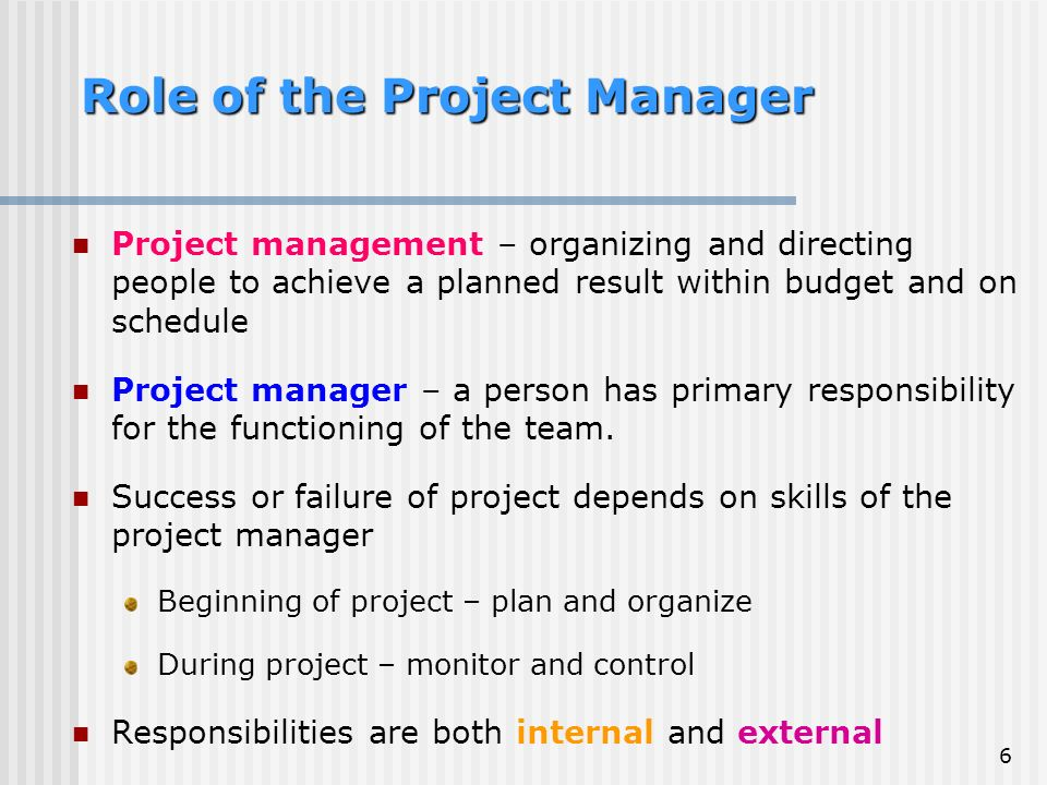 Role of a Project Lead in a Six Sigma Project