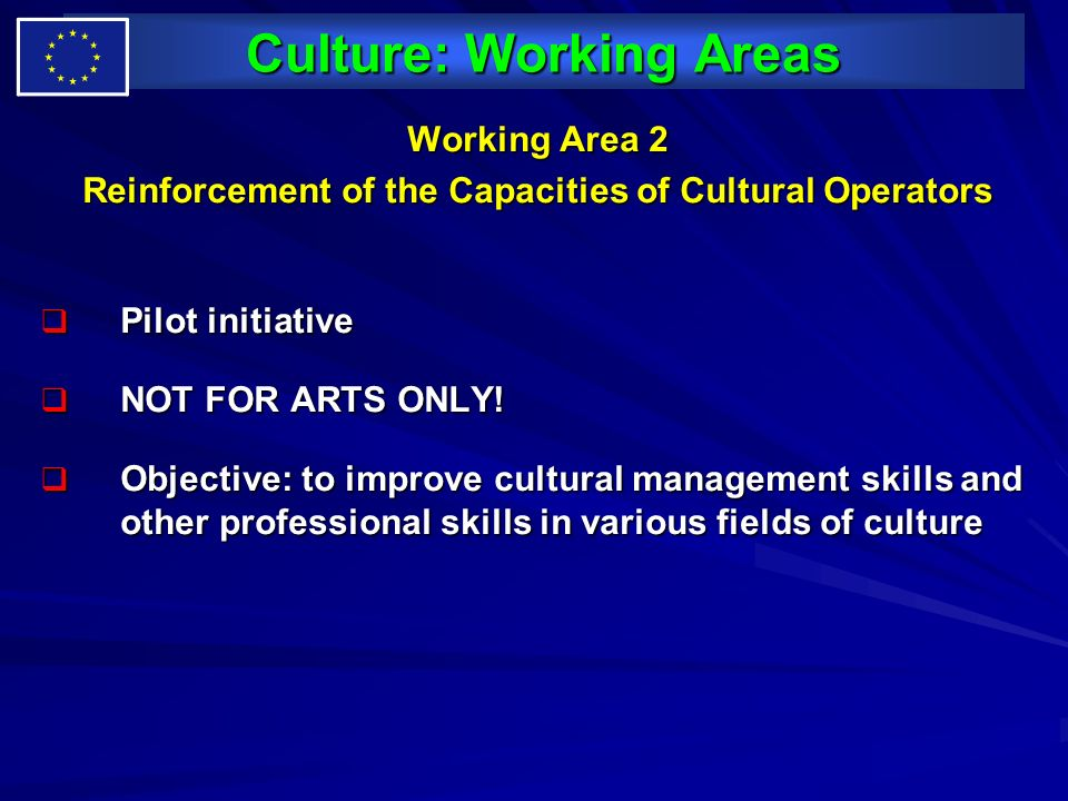 Culture: Working Areas