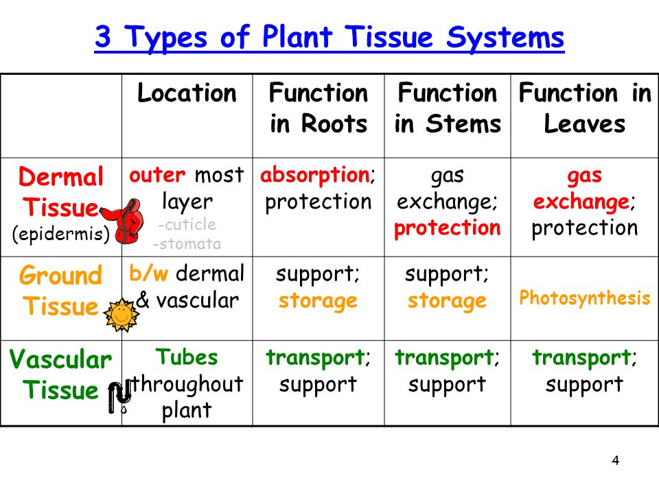 plant location methods Lesson 7 plant location and layout abha kumar structure 70  introduction 71 objectives  it evolved from the handicraft method of production.