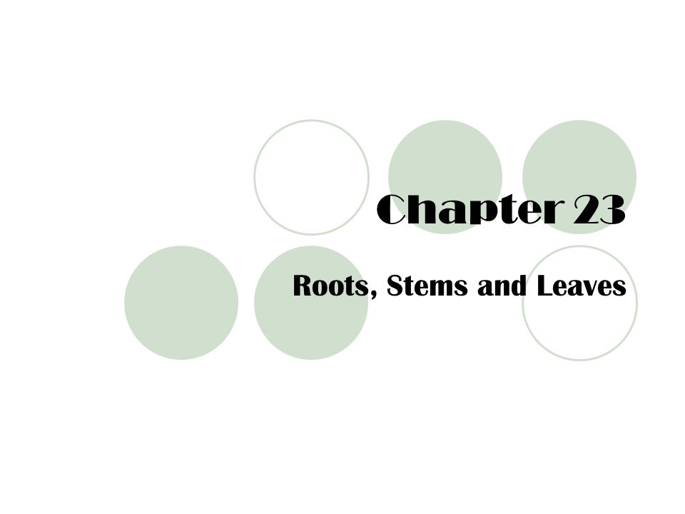 Chapter 23 Roots, Stems and Leaves