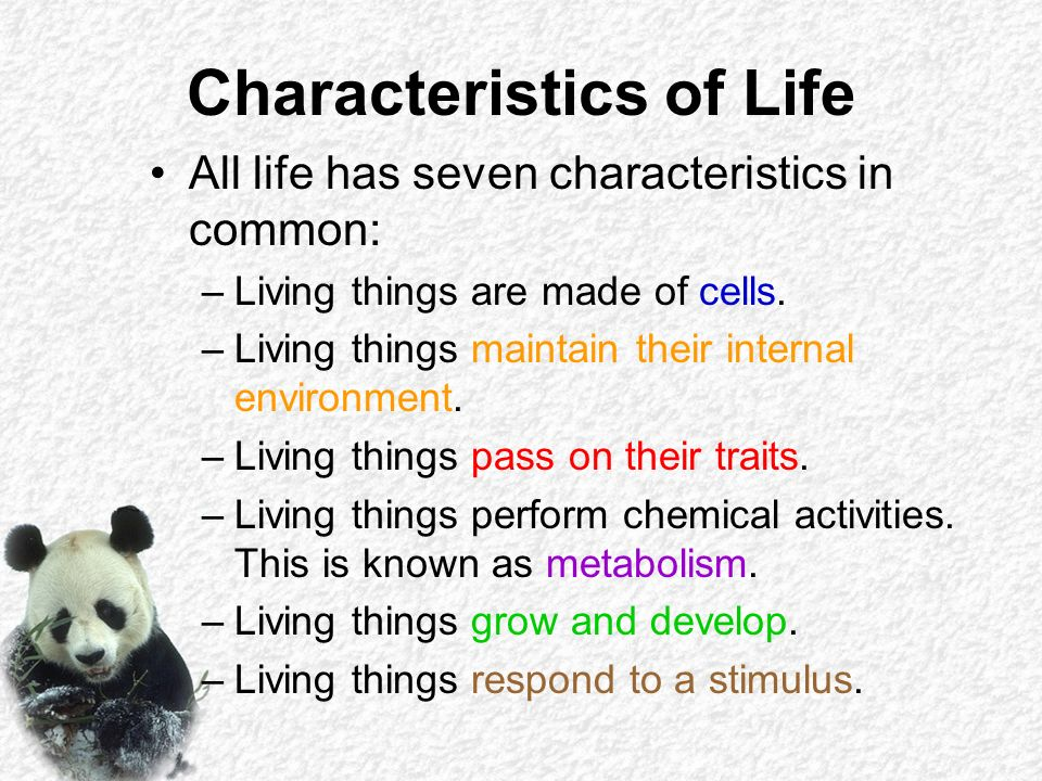 a description of living things and their environment Living things have structural features and adaptations that help them to survive in   look at species descriptions of animals such as penguins, whales and krill  examine specific adaptations to the environment such as the dense feathers and .