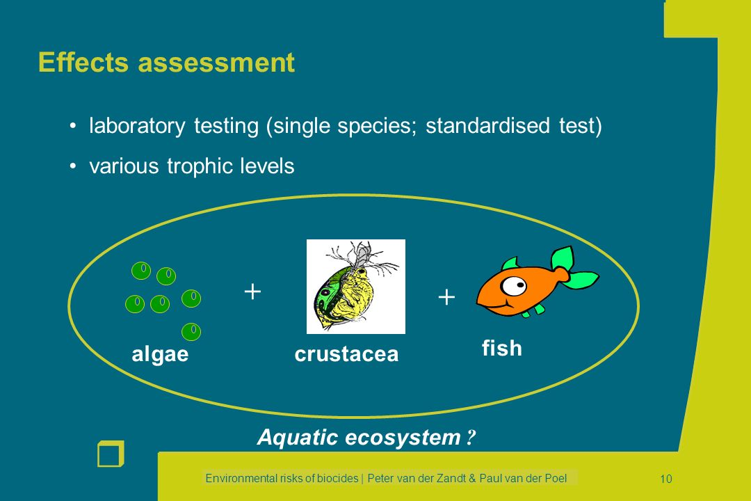Effects assessment laboratory testing (single species; standardised test) various trophic levels. algae.