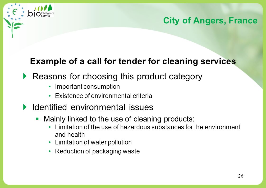 Example of a call for tender for cleaning services