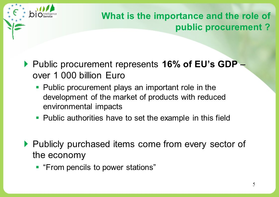 What is the importance and the role of public procurement