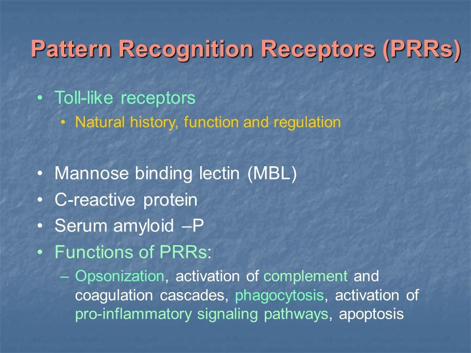 what relationship do toll like receptors have to pathogen associated molecular patterns