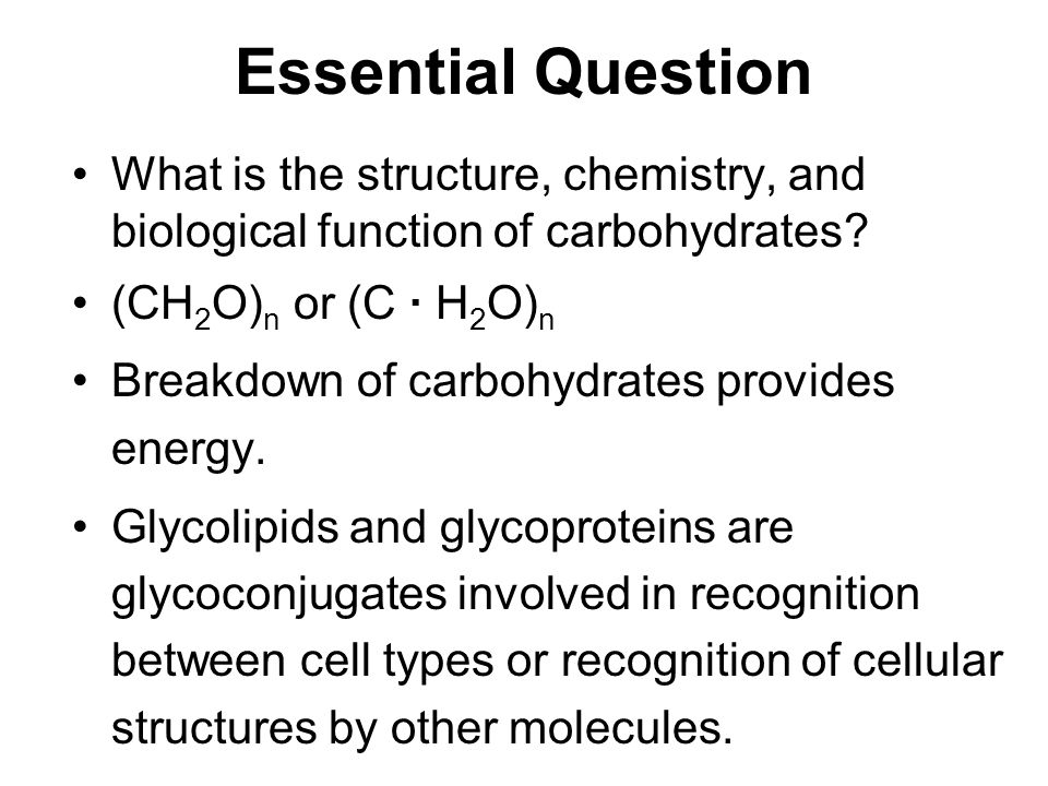 carbohydrates and the glycoconjugates of cell surfaces - ppt video, Sphenoid