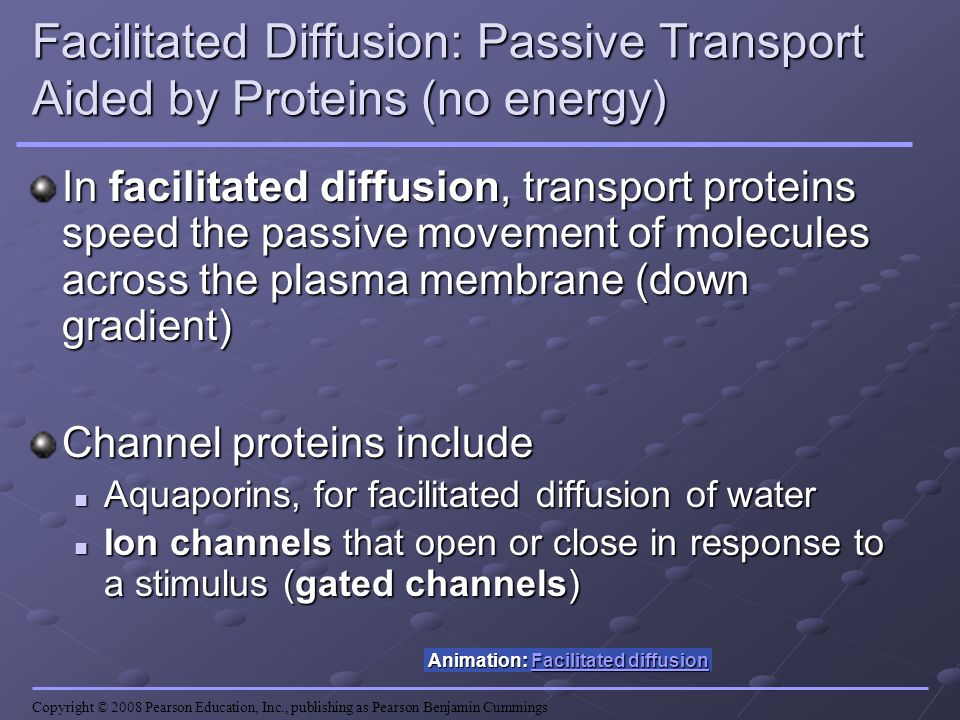Facilitated Diffusion: Passive Transport Aided by Proteins (no energy)