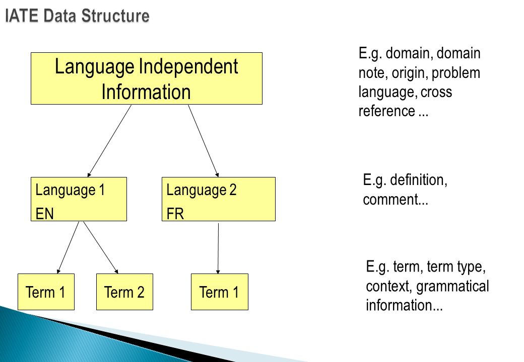 Language Independent Information