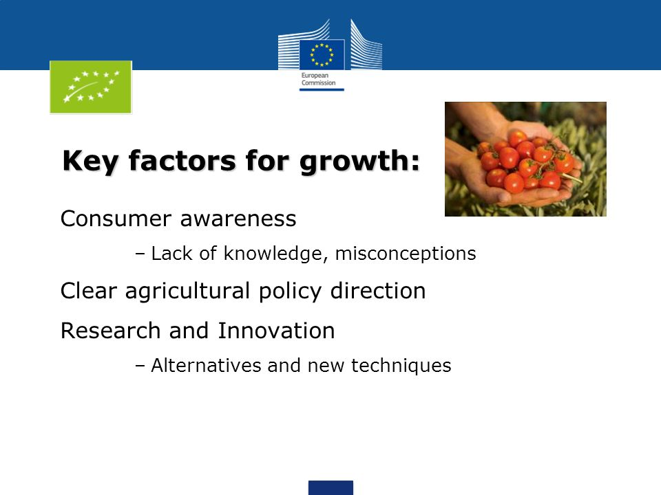 Key factors for growth: