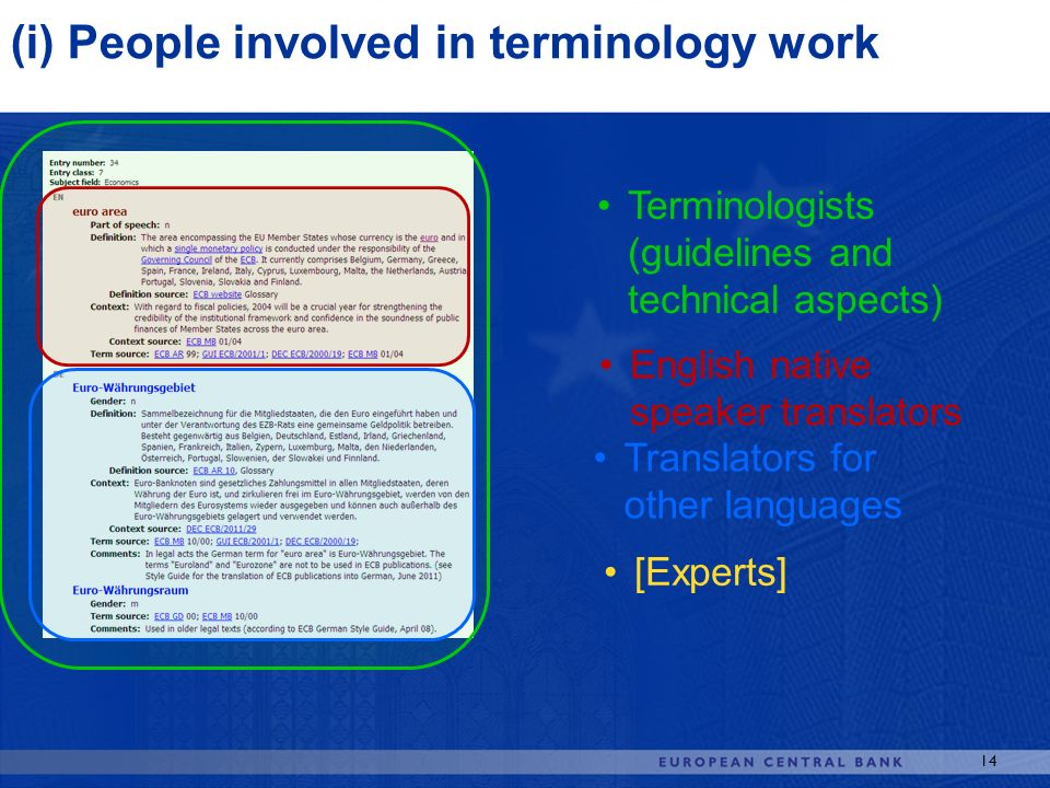 (i) People involved in terminology work