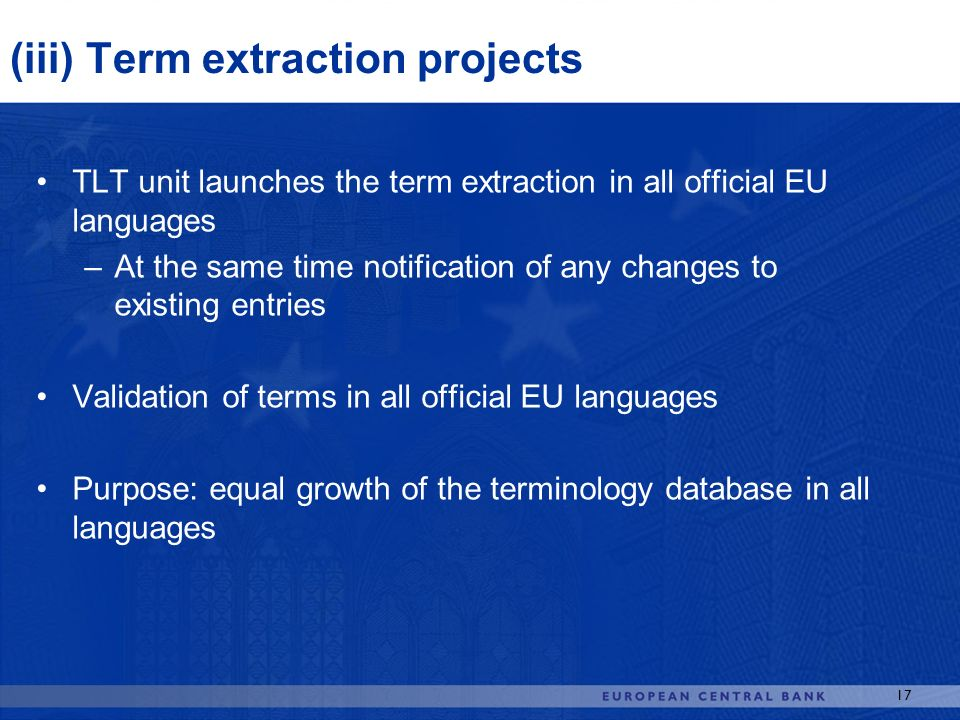 (iii) Term extraction projects