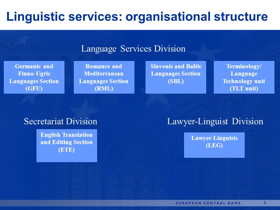 Linguistic services: organisational structure