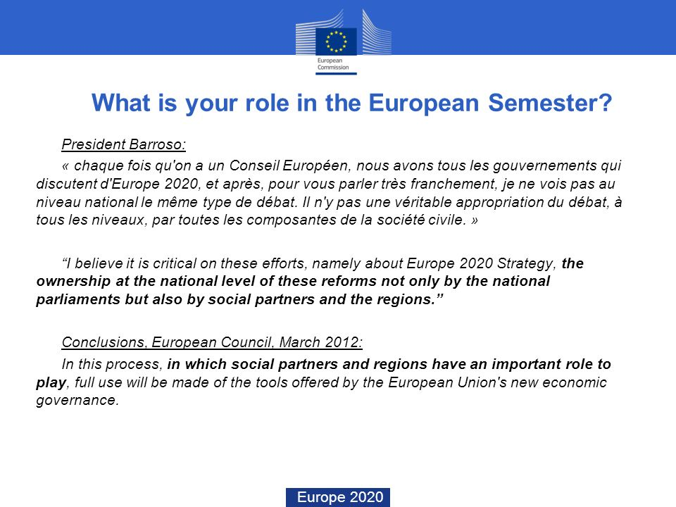 What is your role in the European Semester