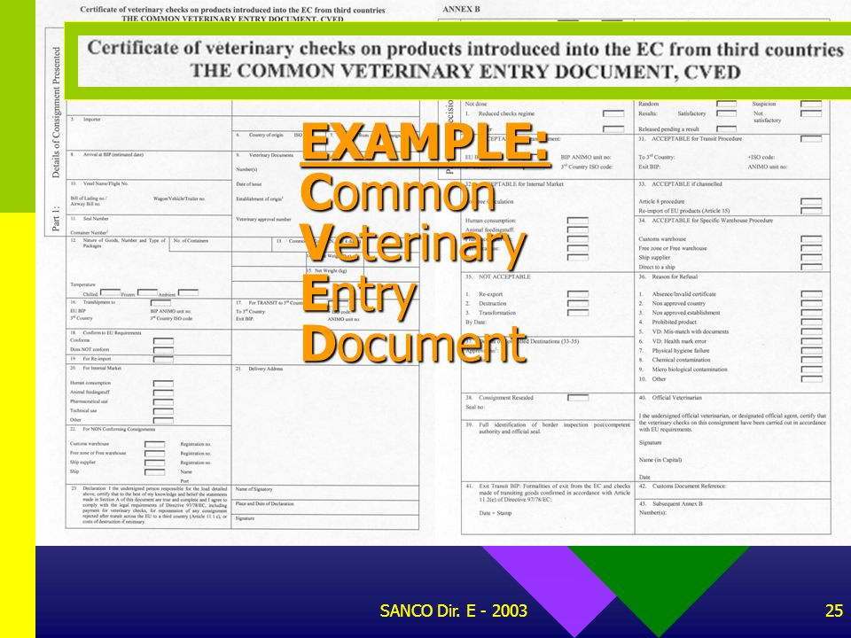 EXAMPLE: Common Veterinary Entry Document