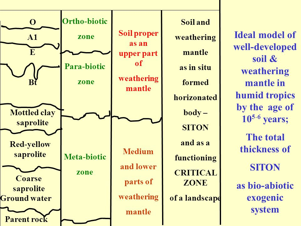 as bio-abiotic exogenic system